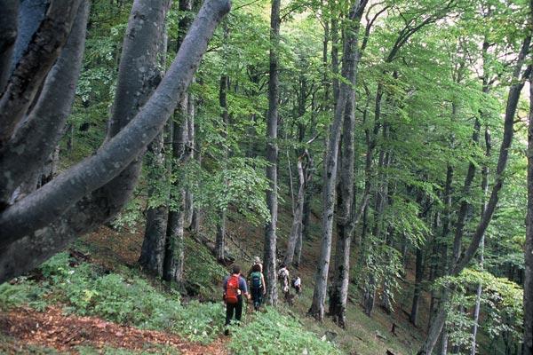 a-trekking-1