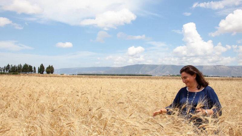 GAL Daunia Rurale 2020:  l'imprenditrice agricola Pasqua Attanasio è il nuovo Presidente