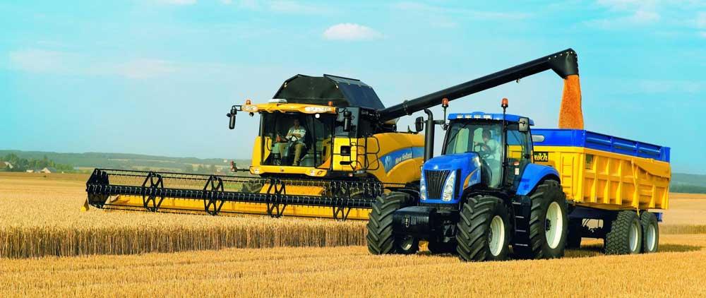 AGRICOLTURA: NECESSARIA LIQUIDITÀ PER GARANTIRE RISTORI E SOSTENERE IL RILANCIO